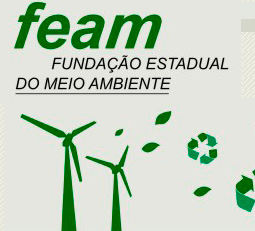 feam.png